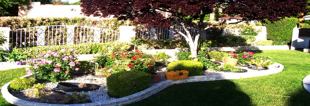 landscaping_panoramic2