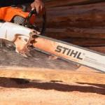 nv stump removal