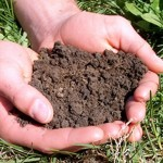 vegas soil test