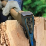man with axe chopping tree
